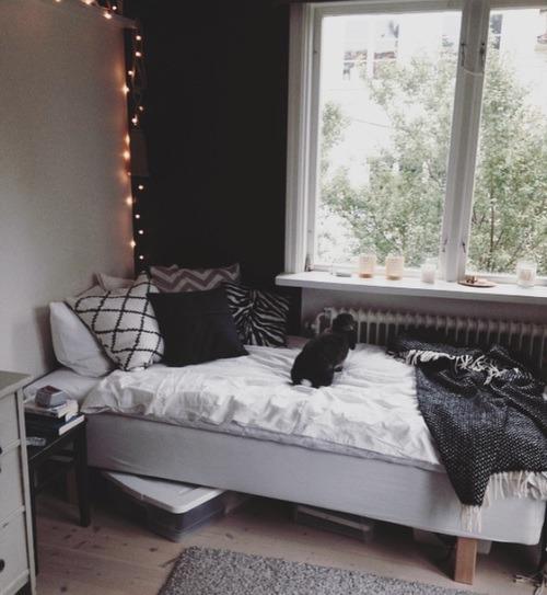 Dormroom Tumblr