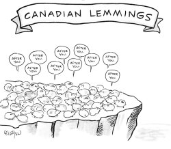 My blog post about lemming ecology was the #2 most popular post at Cool Green Science in 2014.The Amazing Lemming: The Rodent Behind the Snowy Owl Invasion. Last winter, birders in the eastern US were seeing snowy owls everywhere. Why? Ornithologist Joe Smith traces the answer to the population explosions of lemmings in the Arctic.