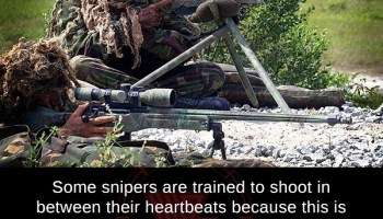Sex therapist Dr  Ruth is also a trained sniper  Her family