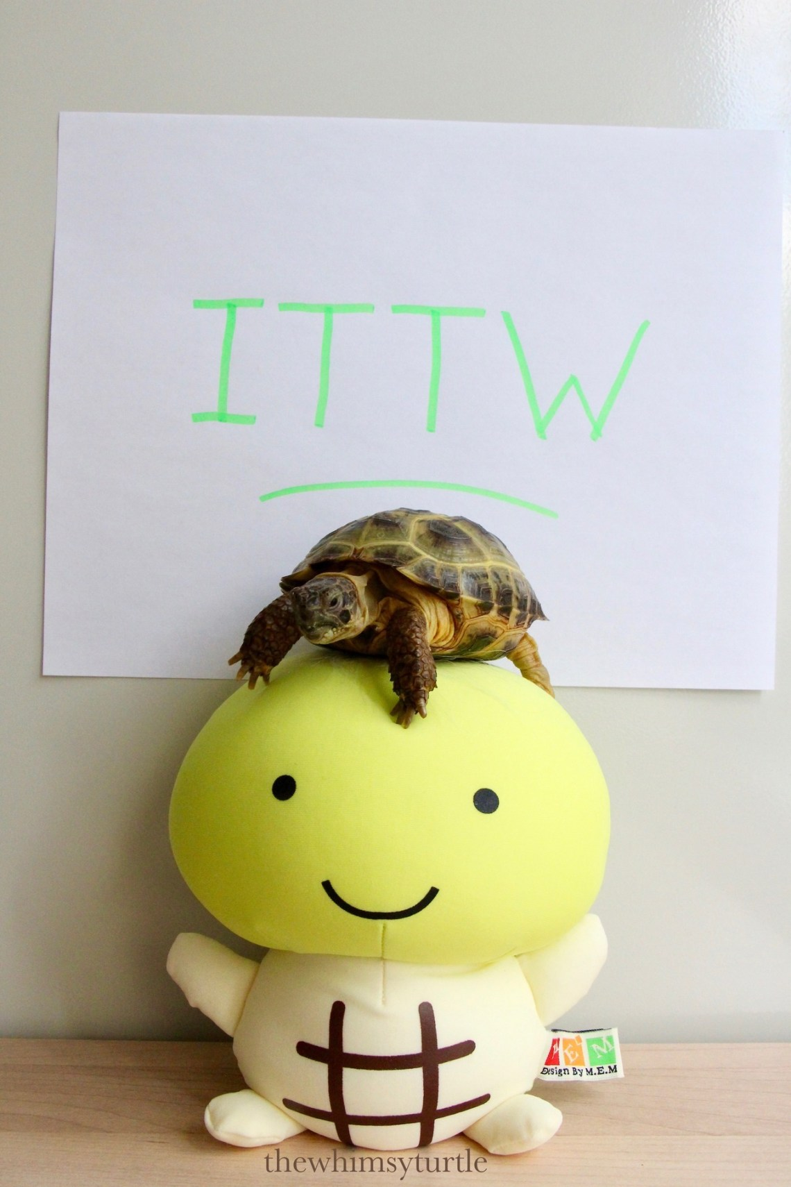Hey, you!  Where are our ITTW party noms?!
