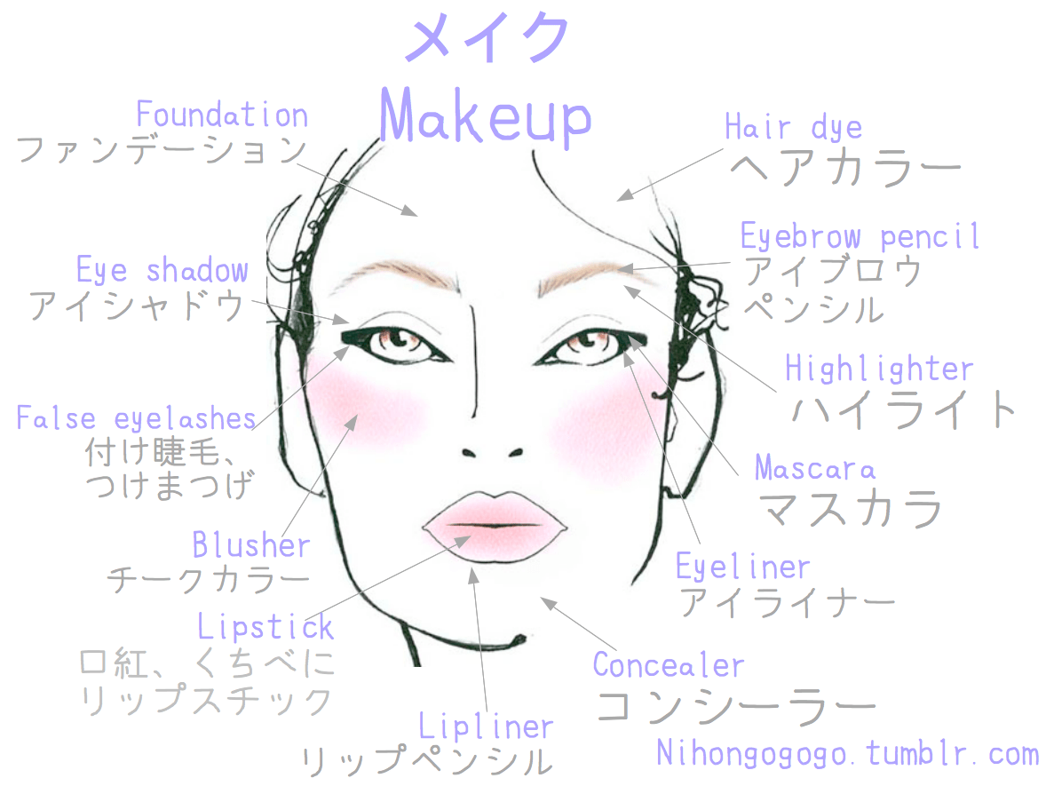 Makeup Vocabulary I Ve Checked This Vocabulary