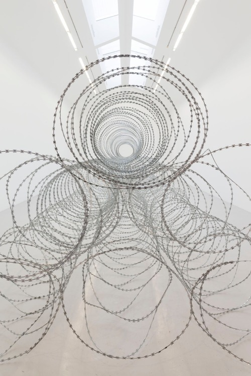 tumblr_o1to3lfKNe1qfc4xho1_500 Gianni Motti, Draft, Galerie Perrorin, 2015 Contemporary