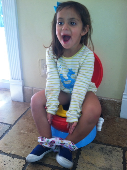Image Result For Best Way To Potty Train A Year Old Boy