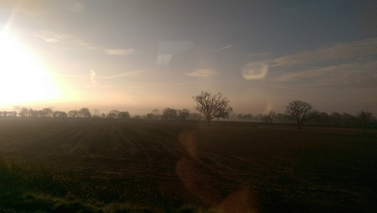 Sunrise over fields, Wiltshire, UK.