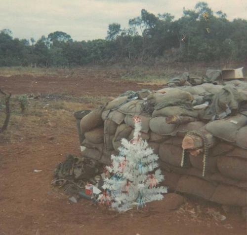 1st Cavalry Division 8th Cav Vietnam 1968 1969