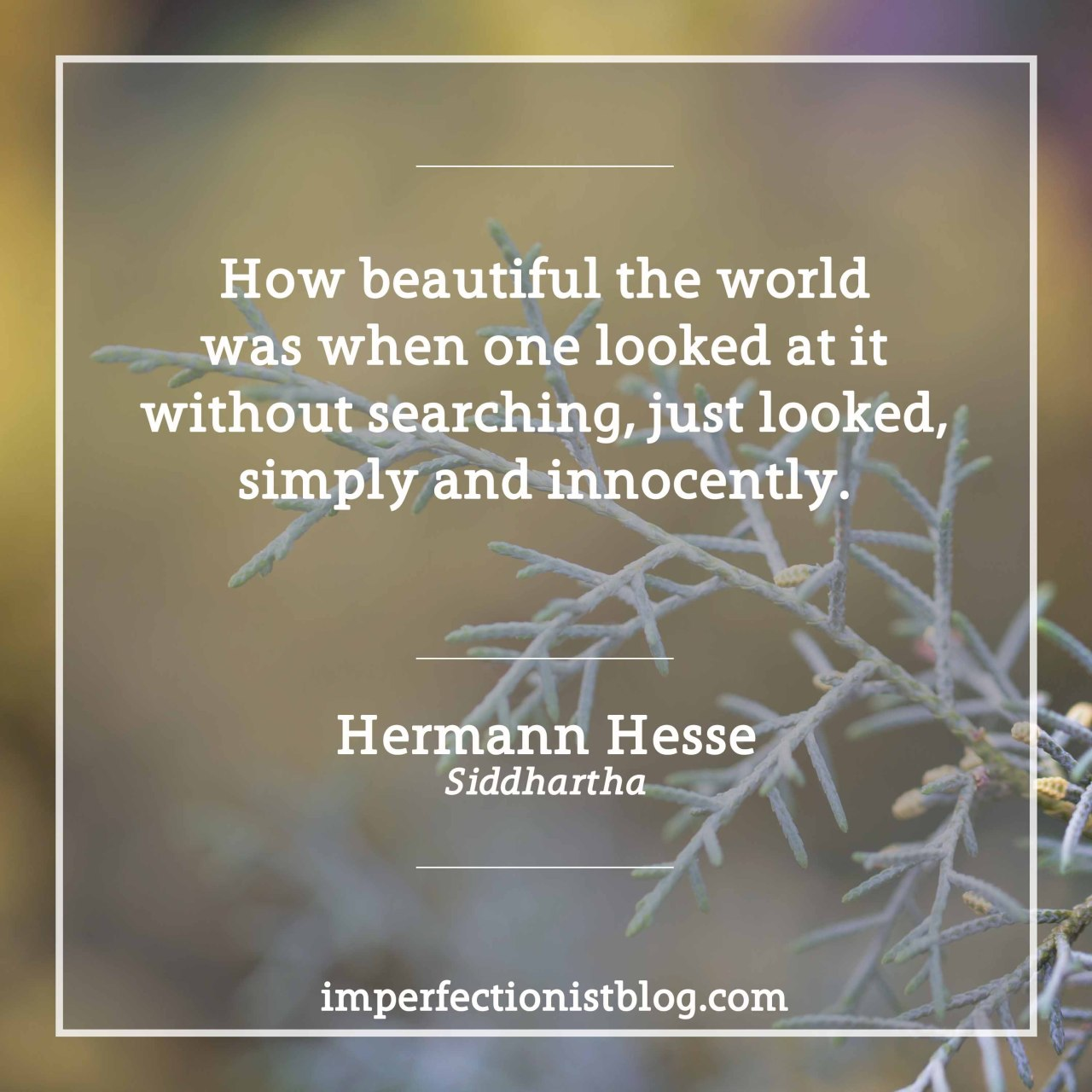 "imperfectionistbooks:#320 - ""How beautiful the world was when one looked at it without searching, just looked, simply and innocently."" -Hermann Hesse (Siddhartha)http://imperfectionistblog.com/book/siddhartha-by-hermann-hesse/"