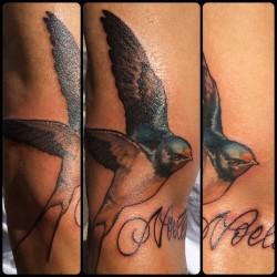 #barnswallowtattoo @broadstreettattoo #tattoo #tattoos #colortattoo