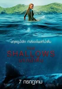 นรกน้ำตื้น (2016) The Shallows