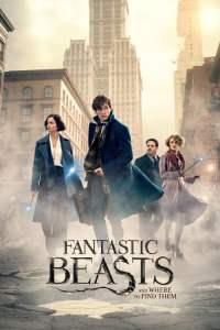 สัตว์มหัศจรรย์และถิ่นที่อยู่ (2016) Fantastic Beasts and Where to Find Them