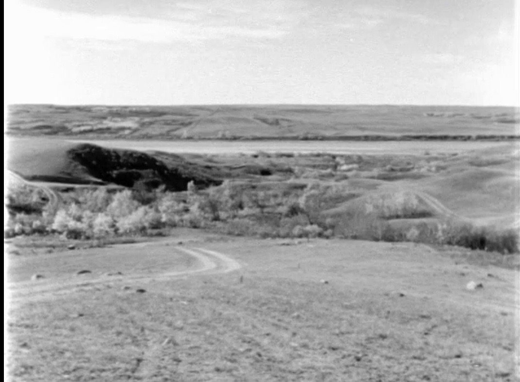 A view of the South Saskatchewan River valley