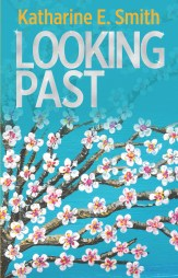 Looking Past book cover EBOOK
