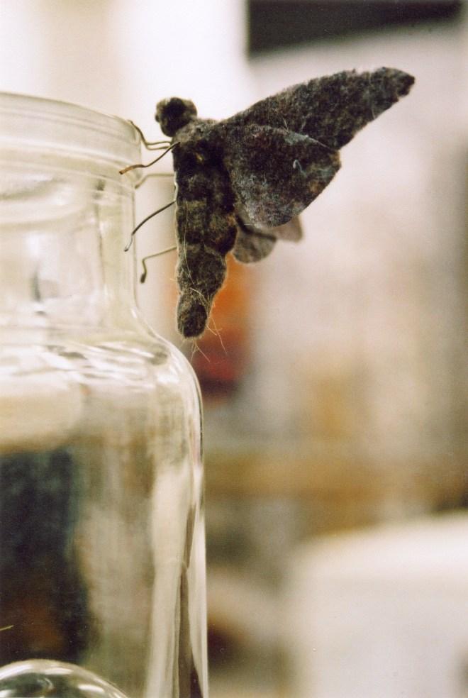 moth&jar2