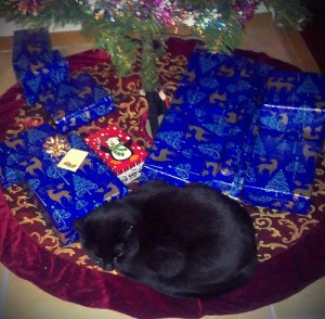 Goliath Under the Tree!