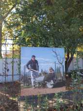 art jardin (6)