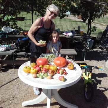 Retour sur quelques photos des jardins partagés