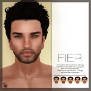 Fier-System-skins-poster
