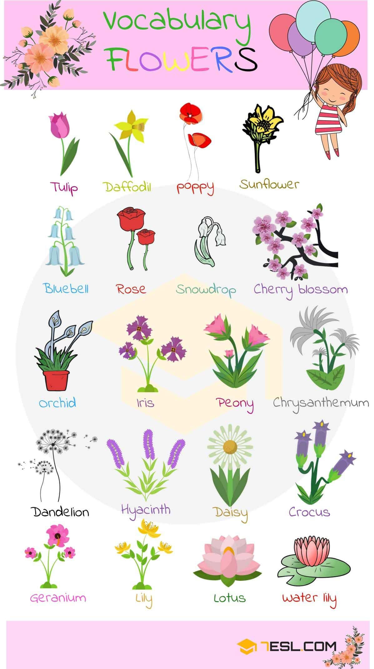 List Of Plant And Flower Names In English With Pictures