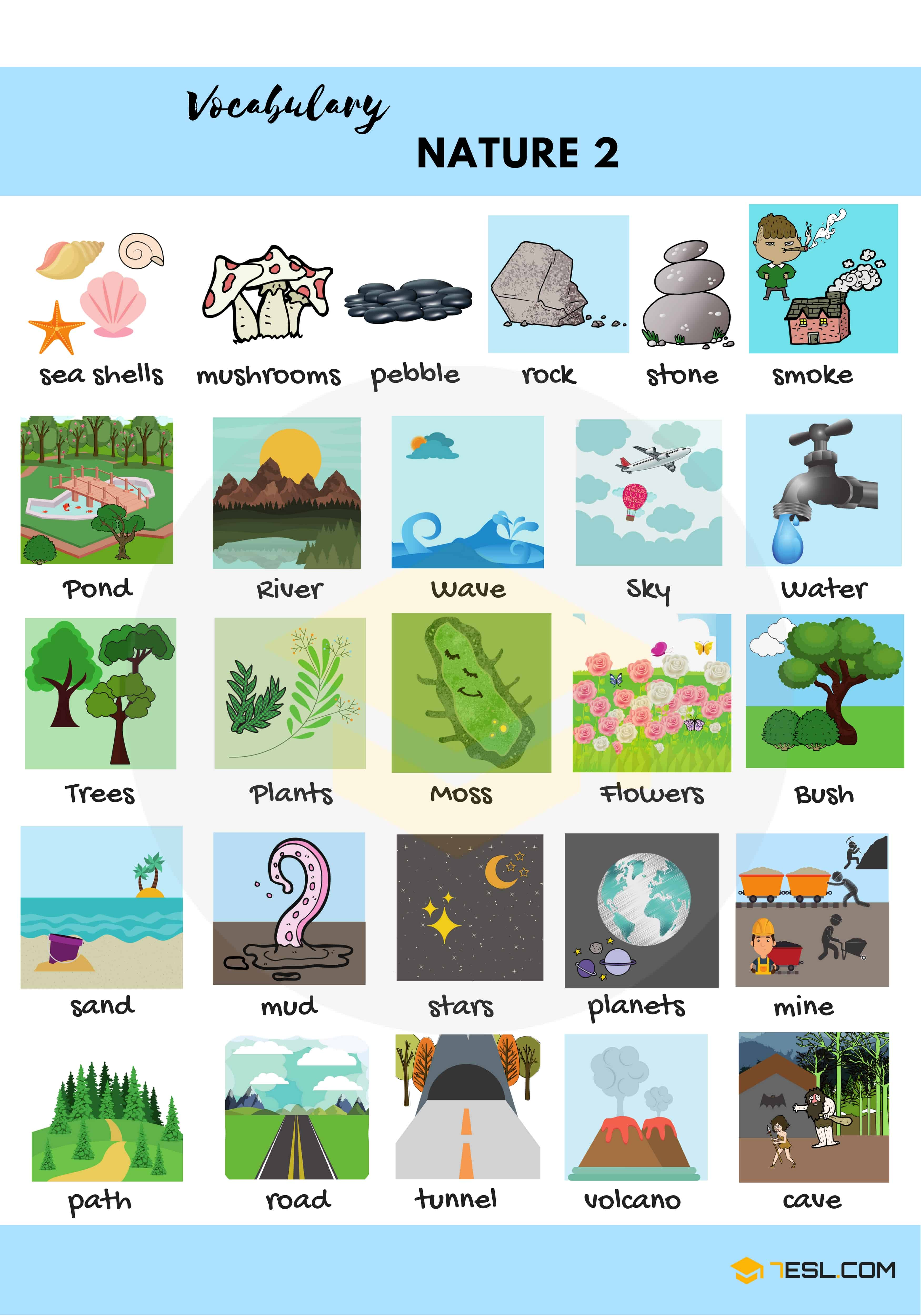 Nature Vocabulary In English The Natural World