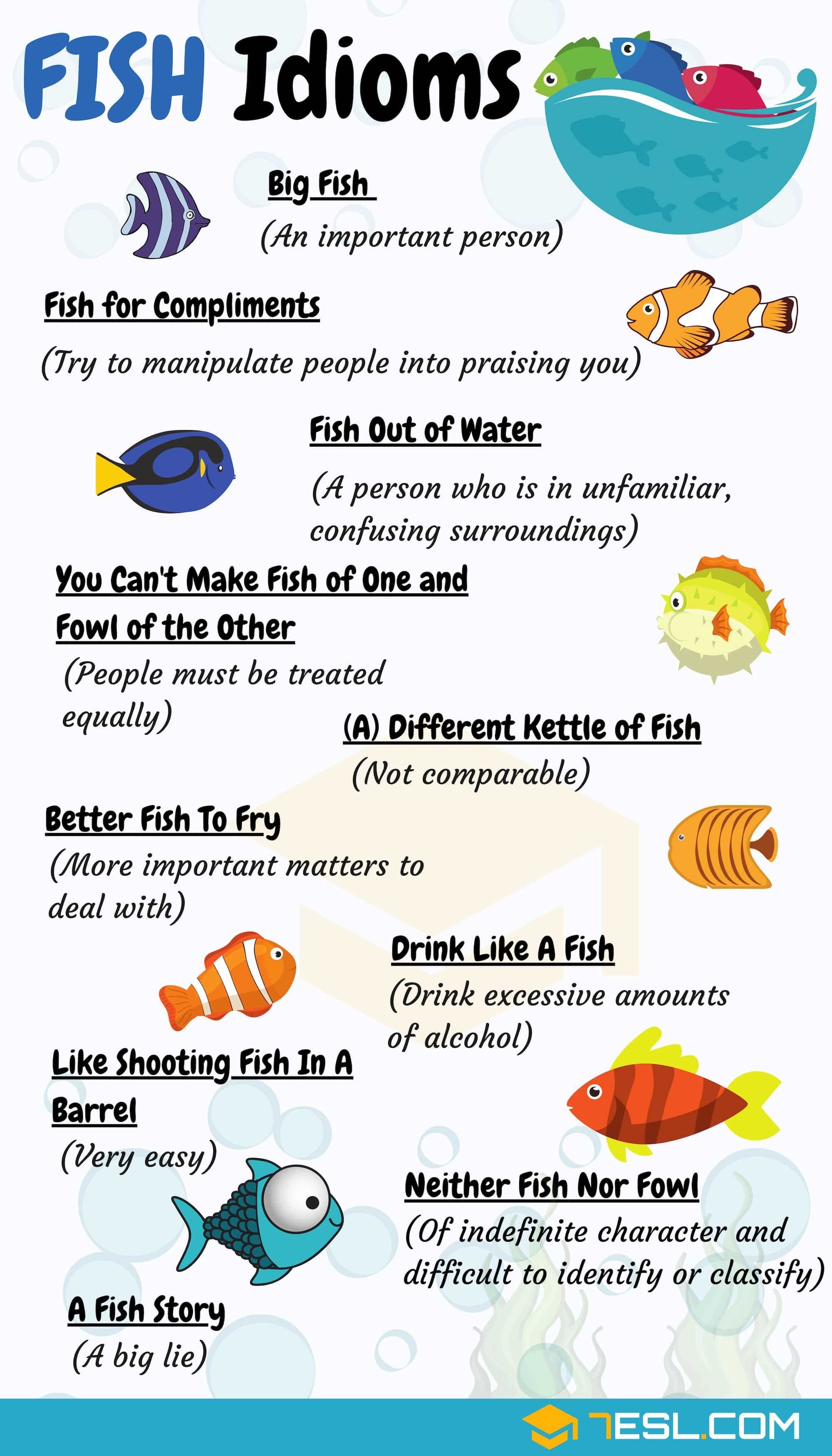 Fish Idioms 18 Useful Fish Idioms And Phrases