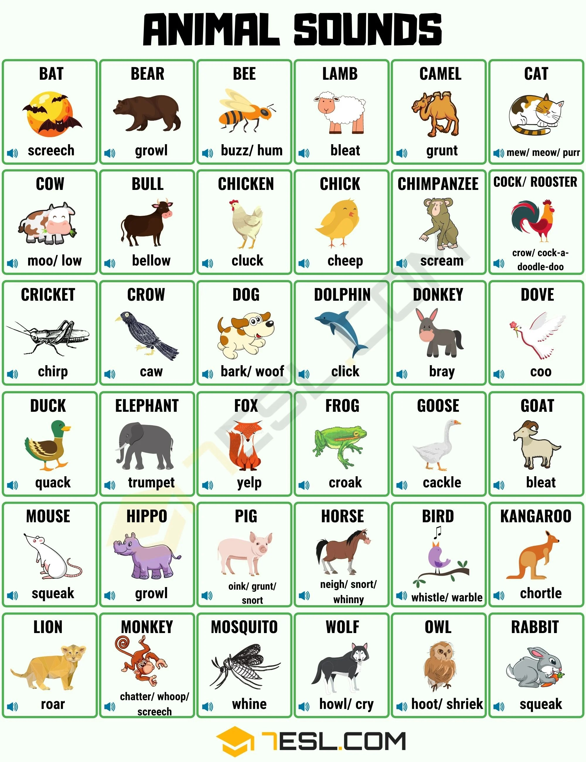 Animal Sounds List Of Different Animal Sounds With