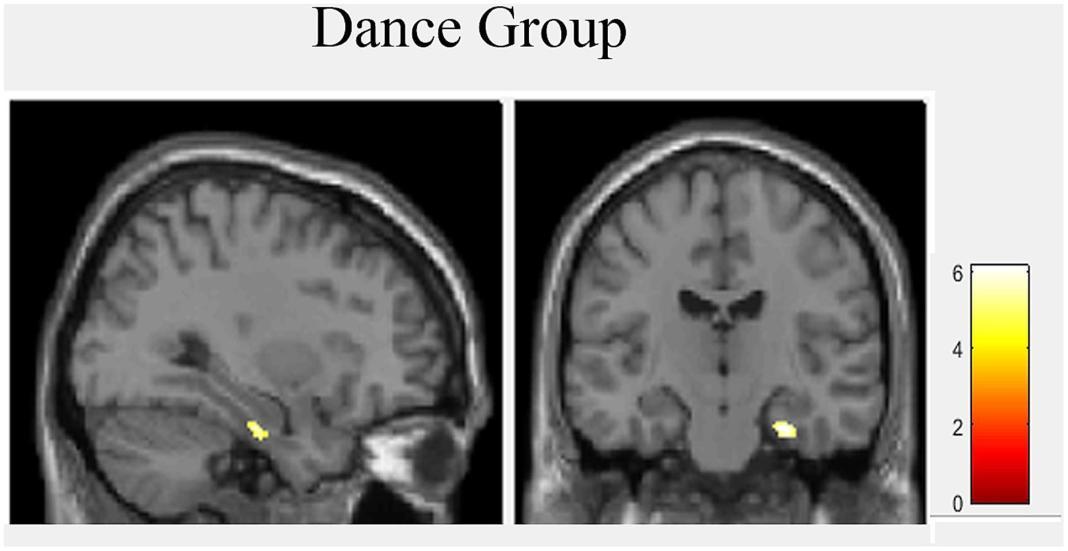 dance group result.jpg