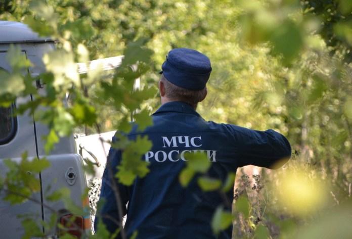 Спасатель дал советы по безопасному сбору грибов