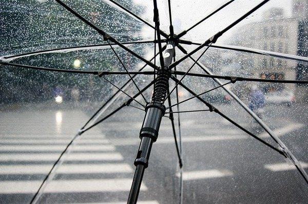 Две недели в Костроме будут идти дожди