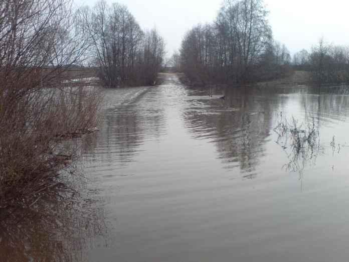 В Рязанской области закрыли мост через Оку