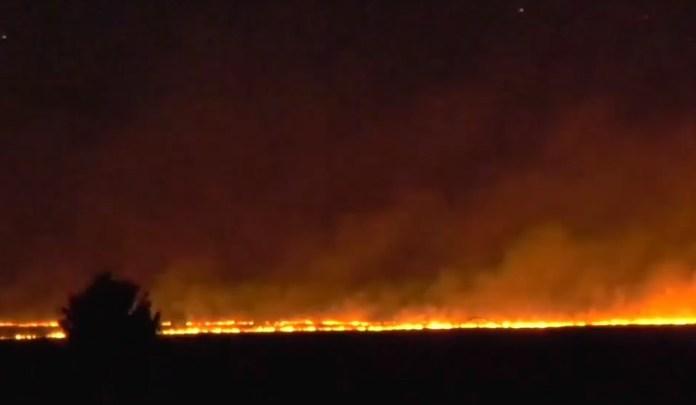 В Рязани горит целое поле травы