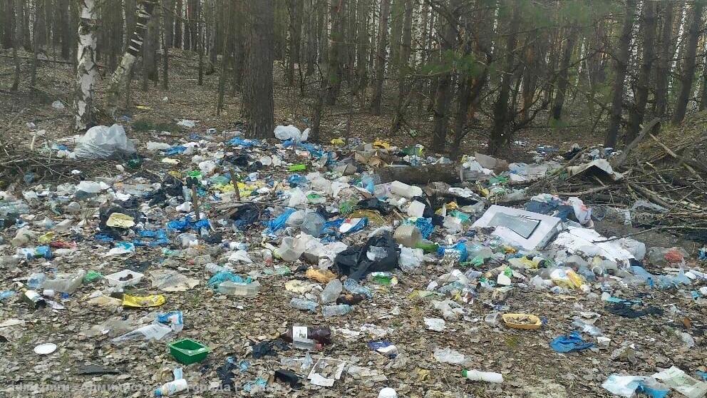 Белгородского чиновника оштрафовали за своеобразную уборку свалки