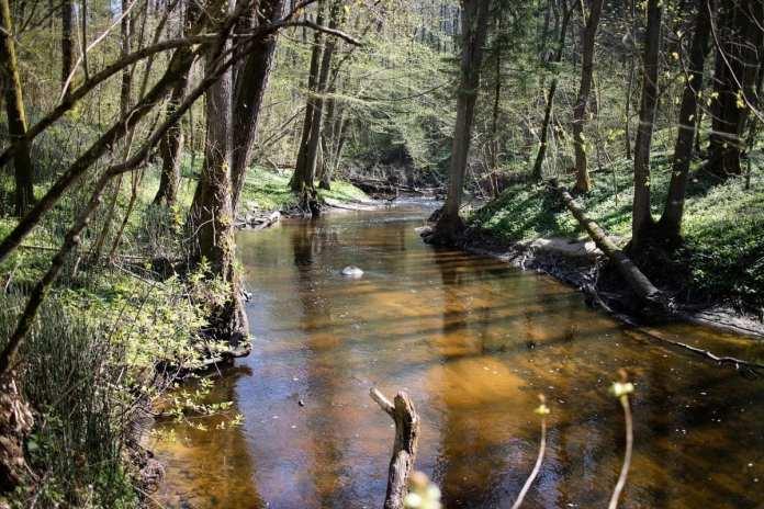 Экологические взводы Минобороны начнут работу в новых регионах
