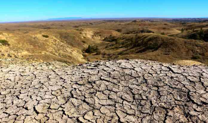 Всемирный день борьбы с засухой