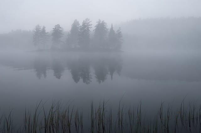 МЧС предупредило рязанцев о тумане
