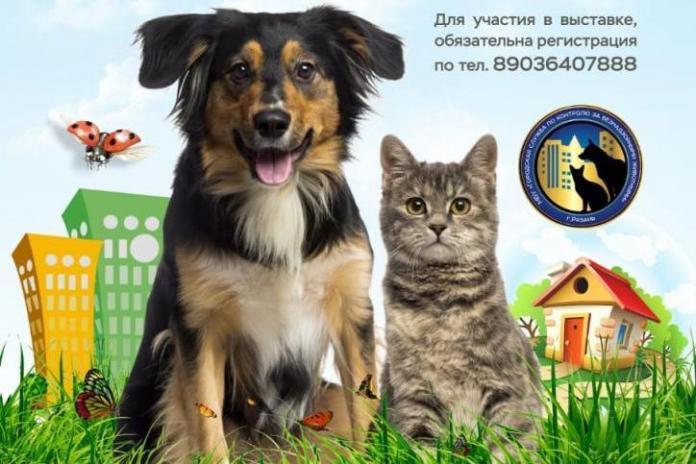 В Рязани пройдет выставка бездомных животных