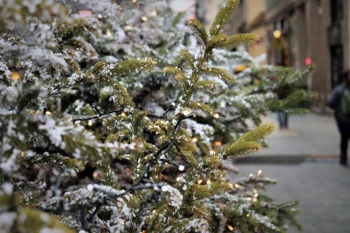 78 елочных базаров откроются в этом году в Липецке 20 декабря