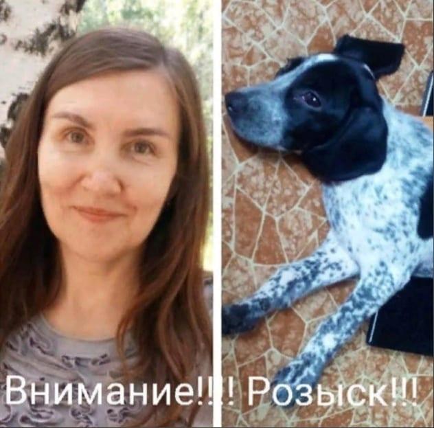 В Астрахани собака вернулась домой без 50-летней хозяйки, женщину разыскивают