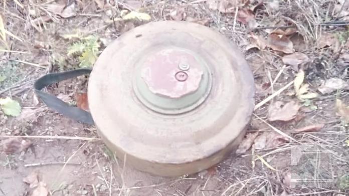В Михайловском районе рабочие нашли мину