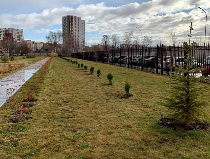 Волонтеры Рязанского отделения Сбербанка посадили вечнозелёные туи на территории БСМП