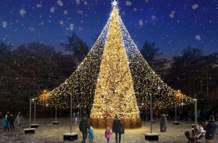 К Новому году на площади Петра Великого в Липецке появится праздничный шатер из гирлянд