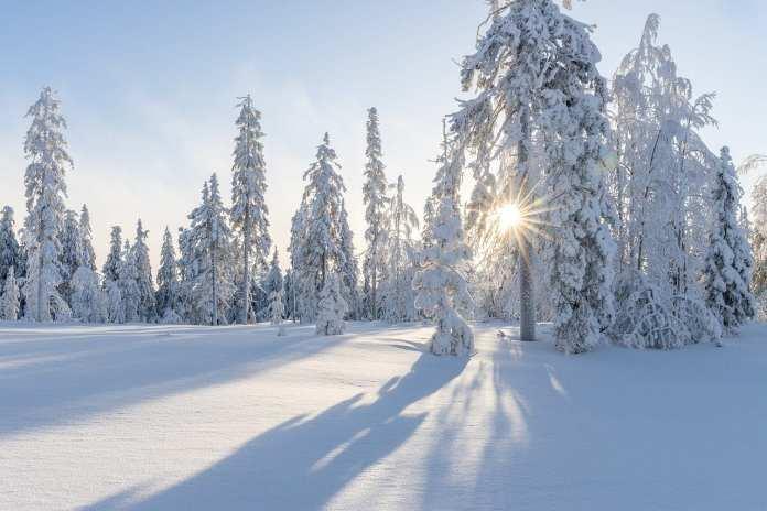 В Рязанской области в ночь на воскресенье похолодает до -15