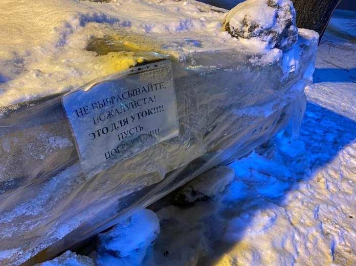 В центре Великого Новгорода появился домик для зимующих тут уток