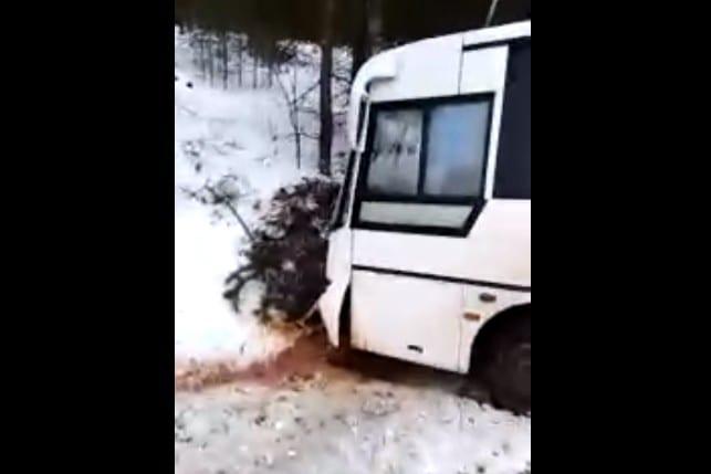 Рейсовый автобус попал в ДТП в Рязанской области