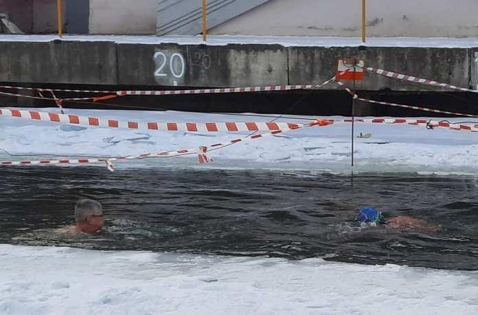 В рязанском ЦПКиО моржи устроили заплыв