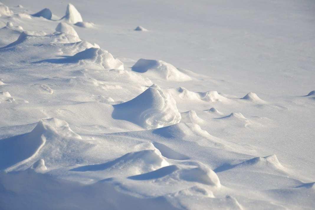 Потепление до +6 градусов ожидается в Рязанской области