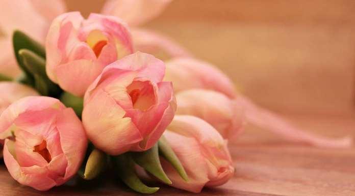 Эксперты заявили о резком подорожании цветов в России