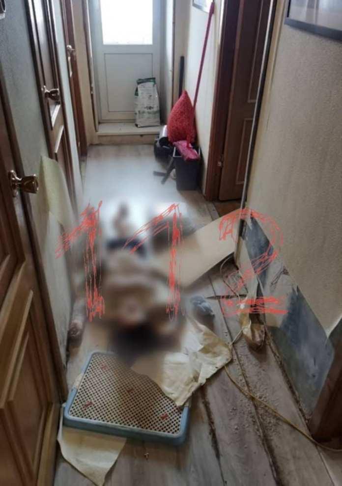 Появилось фото из квартиры, где обнаружили труп бывшей участницы группы Little Big