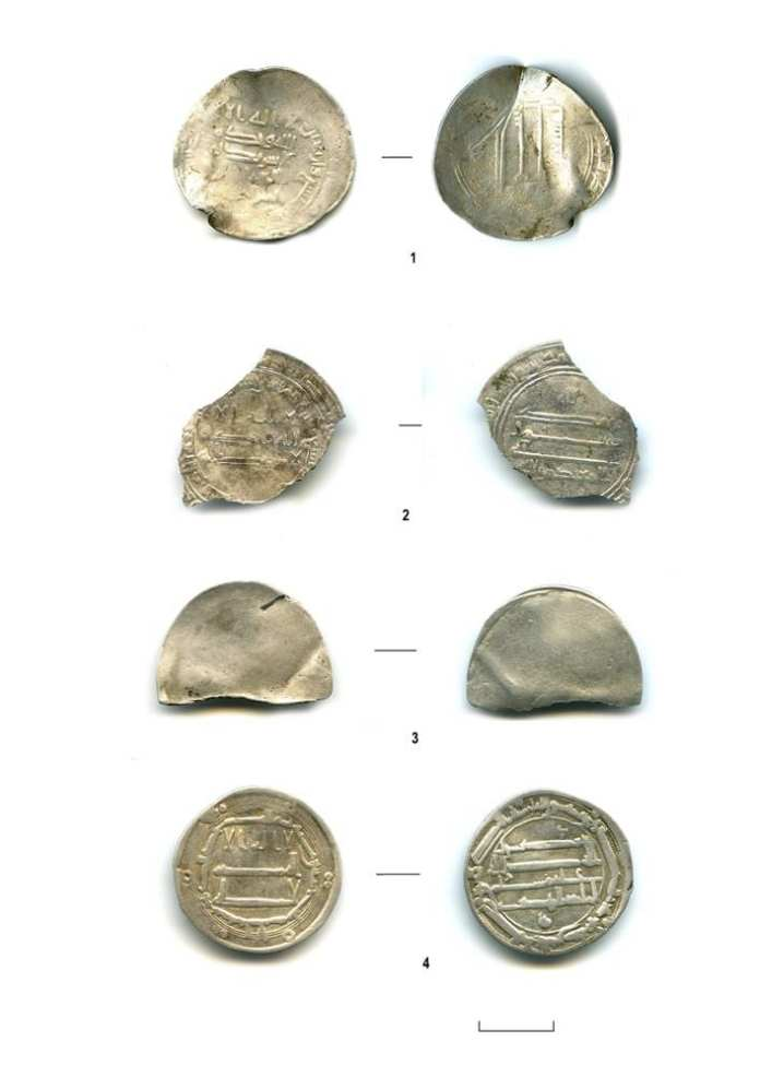 В Рязанской области археологи РАН обнаружили арабские монеты VIII-IX веков