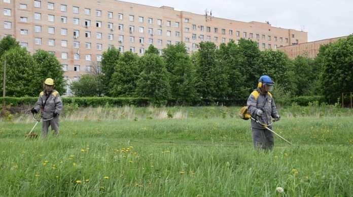 Рязанская НПК провела субботник на территории областной больницы
