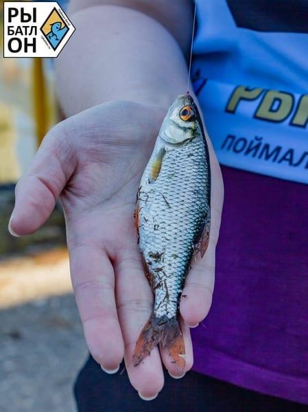 Новый сезон рыбатлона стартовал с отличным клёвом