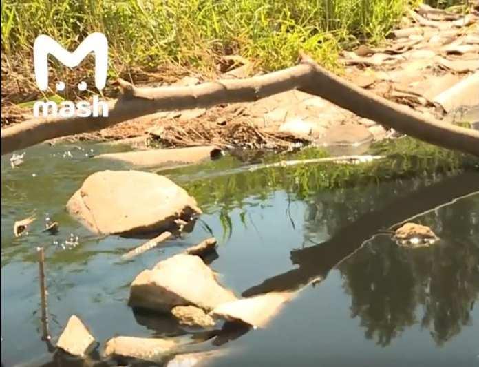 Крупный федеральный паблик заинтересовался загрязнением рязанского озера